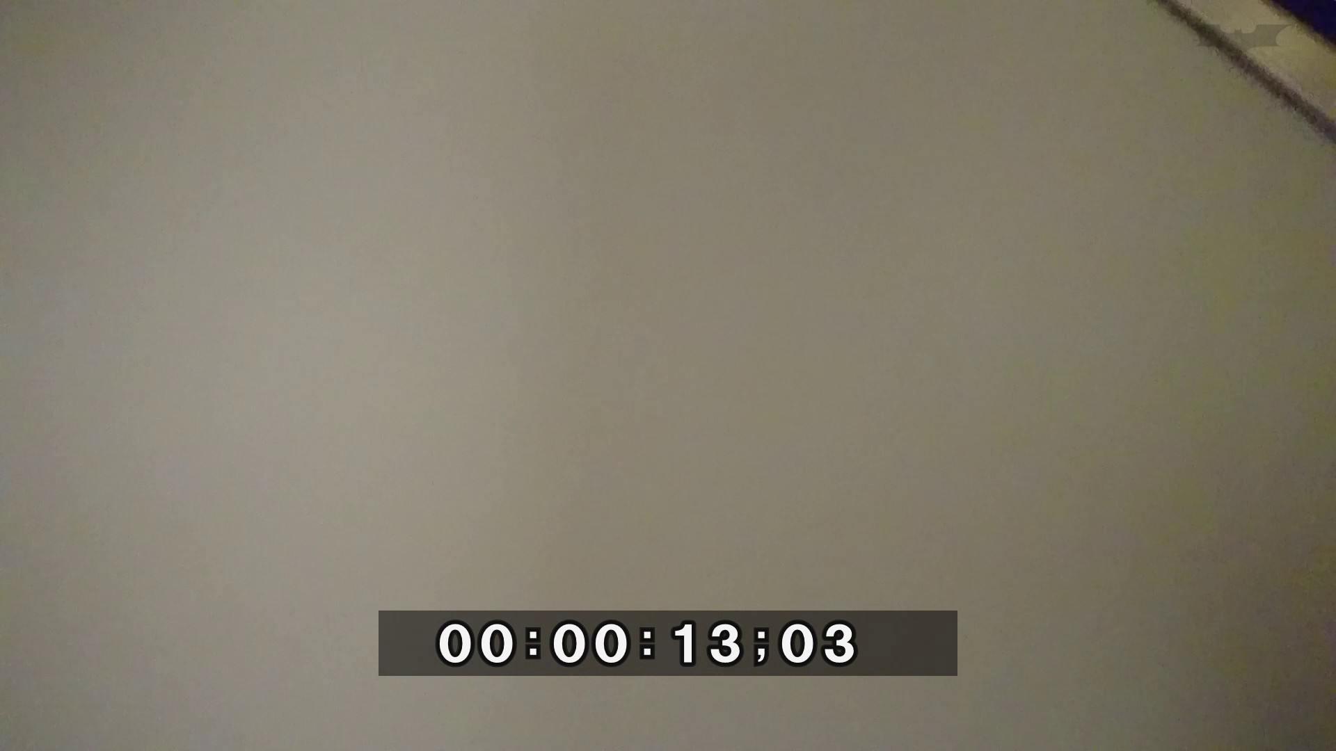 化粧室絵巻 ショッピングモール編 VOL.04 OL | 高画質  100連発